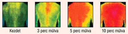 Az infravörös sugárzás hatása - Fűtéskorszerűsítés hatékonyan